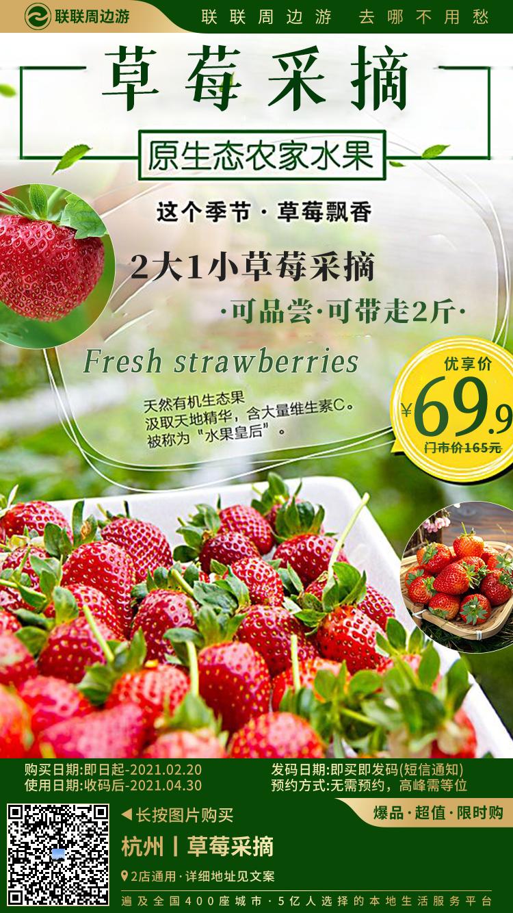 """【2店通用·新年福利】2021""""莓""""好时光从一场草莓采摘开始吧!69.9元享两大一小草莓采摘套餐~可品尝,可带走两斤,饱满香甜,丰富维生素,快来把个儿大鲜甜的草莓带回家~"""