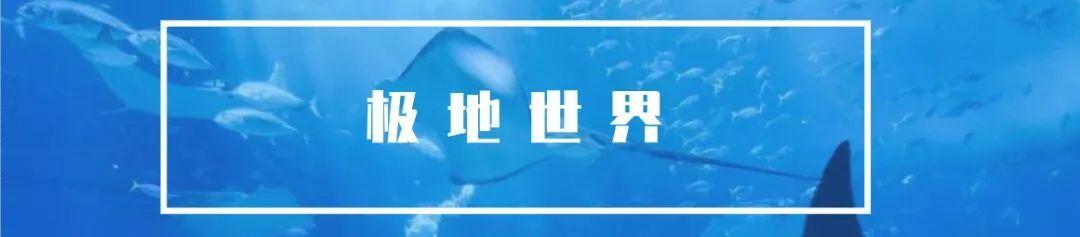 奇妙的海底世界,百看不厌!【康美新世界·海洋世界·无需预约】49.9元购买门市价180元套餐,两个成年人+1米以下儿童一名,海狮,水母,淡水鱼,鲨鱼...万余只海洋精灵等你来撩~