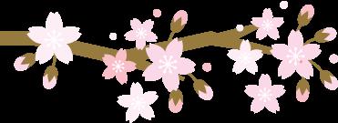 【限量100张】九皇山赏辛夷花29.9元起,踏春氧生、高山温泉,周末春游强推!