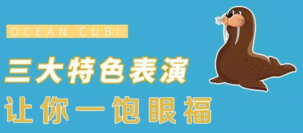 【无需预约丨沪西互动式海洋乐园】福利来袭!49.9元/59.9元购鹏新海洋公园门票