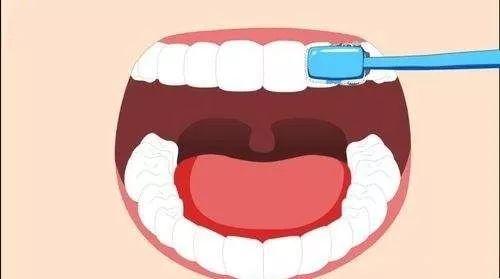 【维乐口腔|七店通用】49.9元享门市价1280元【维乐口腔】洁牙套餐,3D螺旋抛光、口腔CBCT呈像、口腔终身档案、内窥镜检查套餐、轻柔舒适洁牙、口气清新喷雾~清洁牙齿,解决口腔问题,让牙齿亮洁如新~