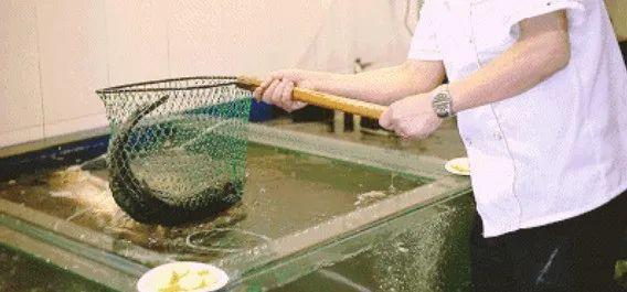 【马王堆 鱼汤泡饭】68元享门市价173元【鱼汤泡饭3-4人餐】!平锅刁子鱼、干锅牛蛙、口味花甲、时蔬、酸菜羊血汤~