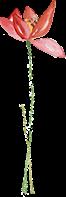 【灵宝市·河滨西路】这家有三层楼小院,让你变美~仅19元享门市价88元【沐辰嫁衣】美甲套餐,含纯色光疗甲/跳色美甲,两颗小钻 一次!48元享门市价168元美睫套餐,含睫毛种植一次(水貂毛,10天内可免费补一次)~美丽看得见!