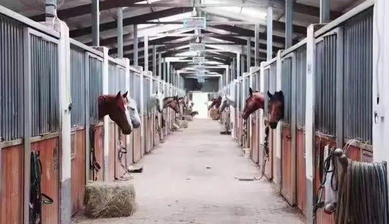 【FamilyFarm马术庄园 | 88元】好骑士两大一小! 马术畅玩活动2次、马场参观、小马陶品彩绘、认识小马品种、喂马与小马互动、骑术讲解、教练带领小朋友骑马6-8圈、基础的骑乘控制学习!快来一起策马奔腾~