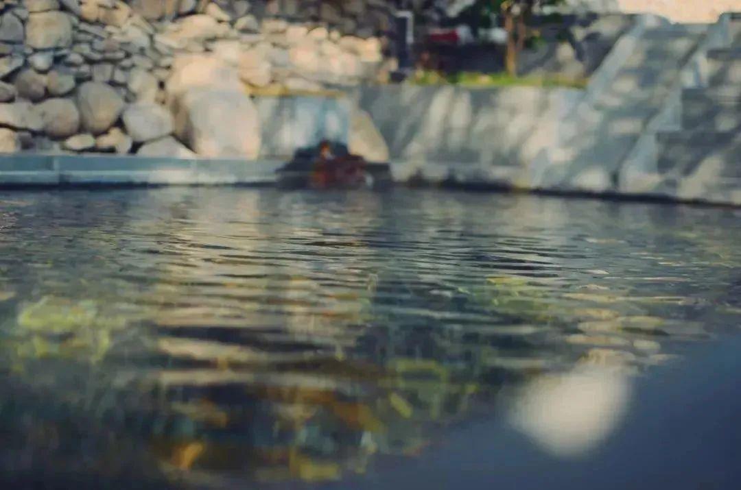 【贾汪龙山温泉|无需预约|提前2小时下单】 冬季度假圣地,享温泉惬意,68/88元购买门市价108/128元套餐,单人门票一张,单人门票+餐费,项目丰富,吃喝玩乐一站式满足